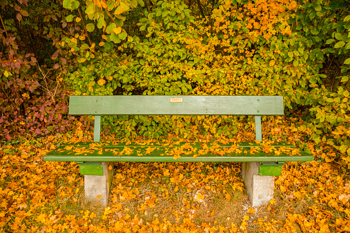 秋「Germany, Baden-Wuerttemberg, bench covered with autumn leaves」:スマホ壁紙(12)