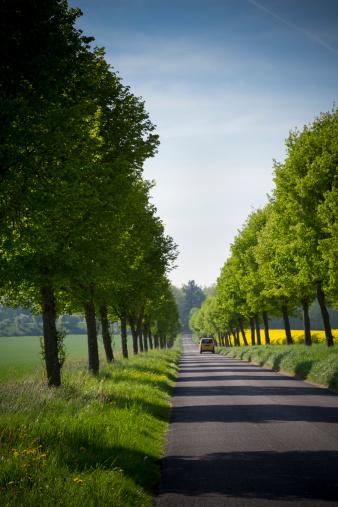 Avenue「Germany, Baden-Wuerttemberg, Einsiedel near Tuebingen, Avenue with delivery van in spring」:スマホ壁紙(15)