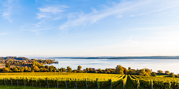 紅葉「Germany, Baden-Wuerttemberg, Panoramic view of Lake Constance near Ueberlingen, vineyards」:スマホ壁紙(7)