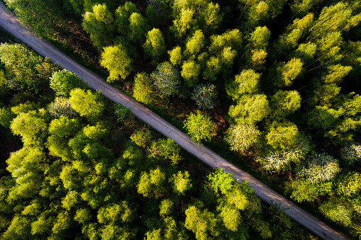 Footpath「Germany, Baden-Wuerttemberg, Swabian Alb, Fils Valley, Aerial view of Schurwald in spring」:スマホ壁紙(4)