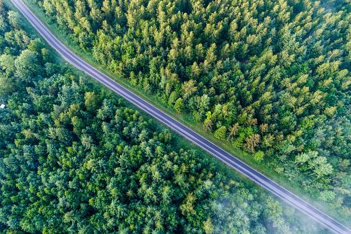 Empty Road「Germany, Baden-Wuerttemberg, Swabian Alb, Schurwald, empty country road in spring」:スマホ壁紙(7)