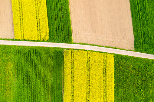 Dirt Road「Germany, Baden-Wuerttemberg, aerial view of fields with country lane」:スマホ壁紙(19)