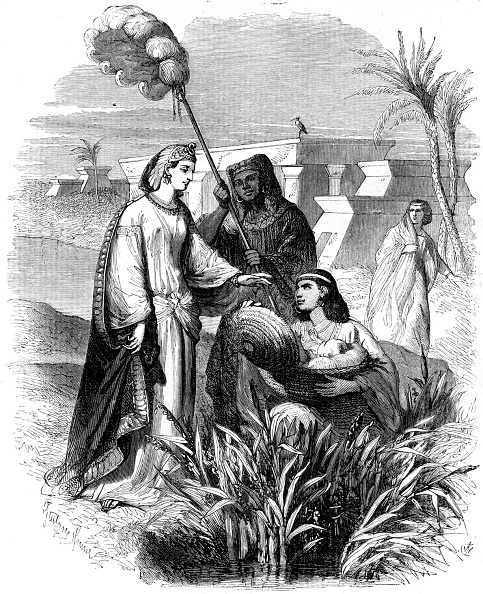 Grass Family「The infant Moses found in the bulrushes」:写真・画像(7)[壁紙.com]