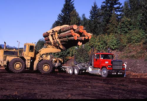 ウィラメット国有林「Log trucK being loaded」:スマホ壁紙(17)