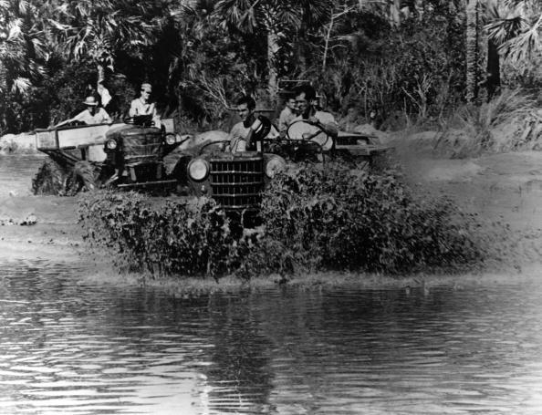 Naples - Florida「Swamp Races」:写真・画像(5)[壁紙.com]