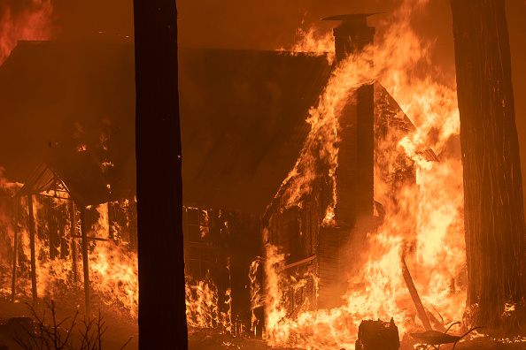 Sequoia National Forest「French Fire In California Burns Almost 15,000 Acres」:写真・画像(2)[壁紙.com]