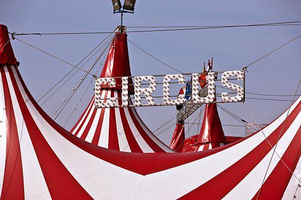 Circus Tent. Color Image:スマホ壁紙(壁紙.com)