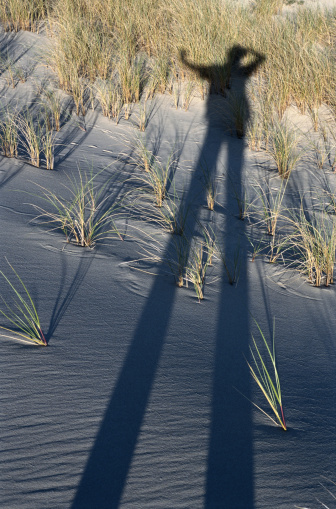 Unrecognizable Person「Grass in Sand with Shadow」:スマホ壁紙(9)