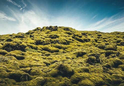 Lava「Mossy Lava Field In Iceland」:スマホ壁紙(4)