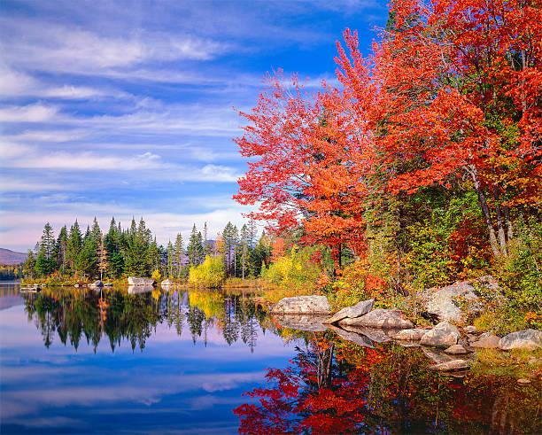 Peaceful colorful autumn fall foliage Jericho lake, New England:スマホ壁紙(壁紙.com)