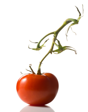 Natural Condition「Tomato on the wine on white background」:スマホ壁紙(7)