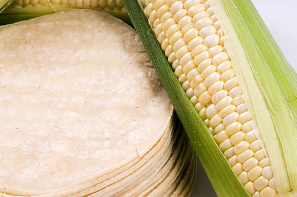 Corn Tortillas:スマホ壁紙(壁紙.com)