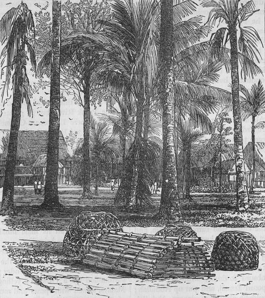 Birch Tree「The Barracks At The Residency」:写真・画像(1)[壁紙.com]
