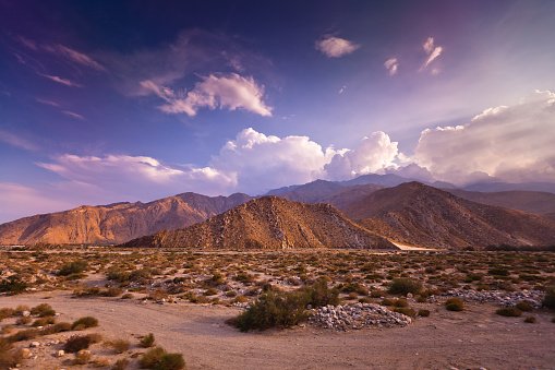 Hill「Dramatic Palm Springs Landscape」:スマホ壁紙(3)