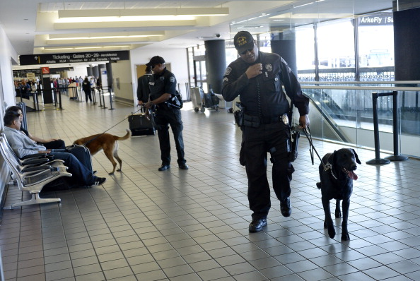 LAX Airport「Travelers Use Los Angeles International Airport Day After Shooting Killed One TSA Agent」:写真・画像(16)[壁紙.com]
