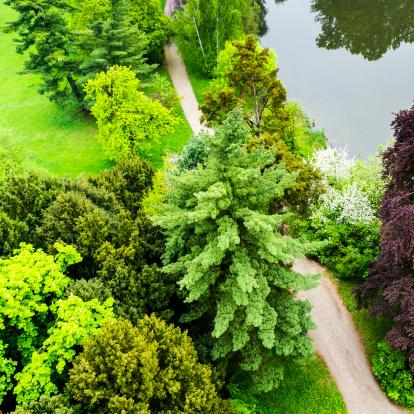 chestnut「Beautiful park with trees, grass, garden path, pond, aerial view」:スマホ壁紙(1)