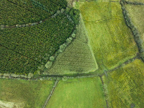 Peat「Beautiful patchwork fields and bogland in Roscommon, Ireland.」:スマホ壁紙(15)