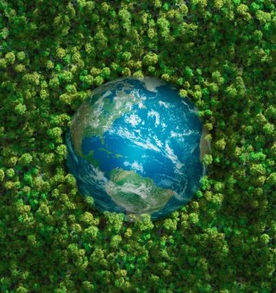 Lush Foliage「The earth embedded in green shrubbery」:スマホ壁紙(5)