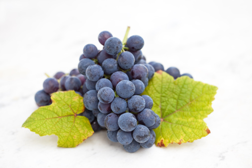 Grape「Bblue grape with leaf on white marble」:スマホ壁紙(12)