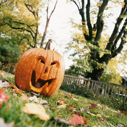 ハロウィン「Pumpkin Jack O Lantern on a Leaf Covered Garden Lawn」:スマホ壁紙(0)