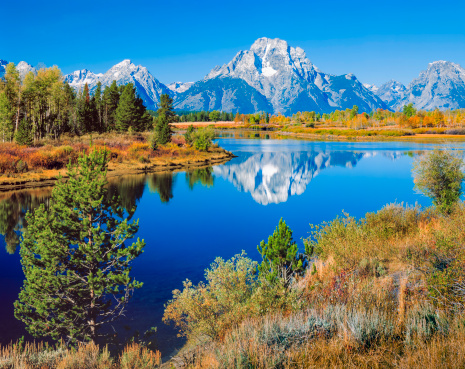 Aspen Tree「Mount Moran, Snake River, Tetons, Oxbow Bend, early autumn」:スマホ壁紙(2)