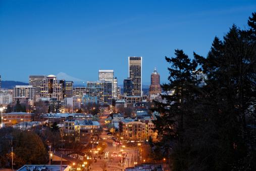 Mt Hood「Dusk shot of Portland, OR skyline」:スマホ壁紙(13)