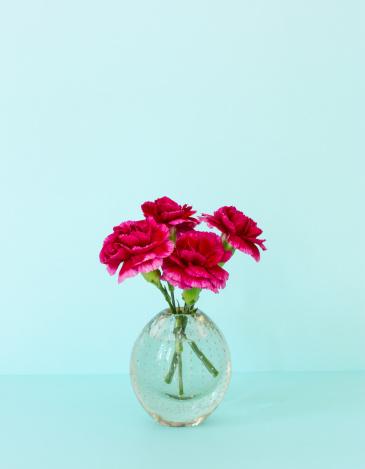 カーネーション「Red carnations in a vintage vase」:スマホ壁紙(15)