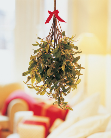 Mistletoe「Mistletoe Hanging in Room」:スマホ壁紙(13)