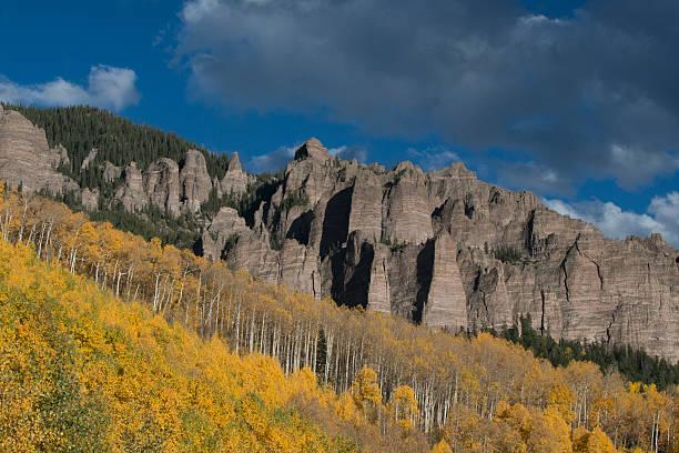Autumn aspen trees (Populus tremuloides) in Uncompahgre National Forest, Owl Creek Pass, Colorado, USA:スマホ壁紙(壁紙.com)