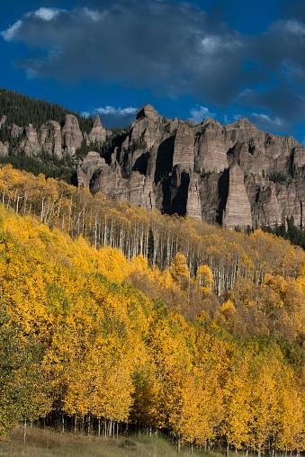 アンコンパグレ国有林「Autumn aspen trees (Populus tremuloides) in Uncompahgre National Forest, Owl Creek Pass, Colorado, USA」:スマホ壁紙(9)