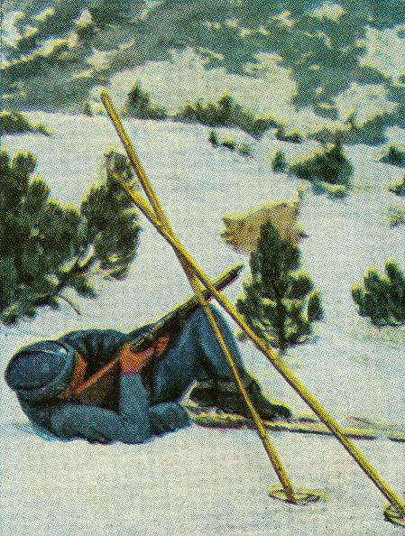 Skiing「Polish military skier (Alpinist) in firing position」:写真・画像(2)[壁紙.com]