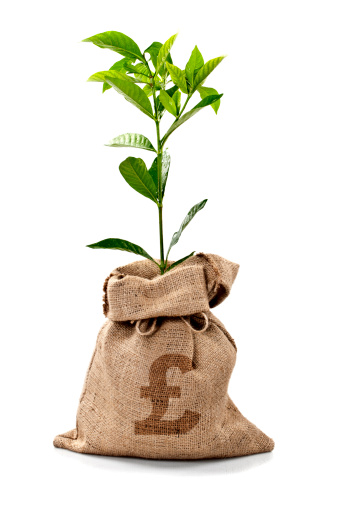 Currency「Money Tree/Money Bag With Pounds」:スマホ壁紙(6)