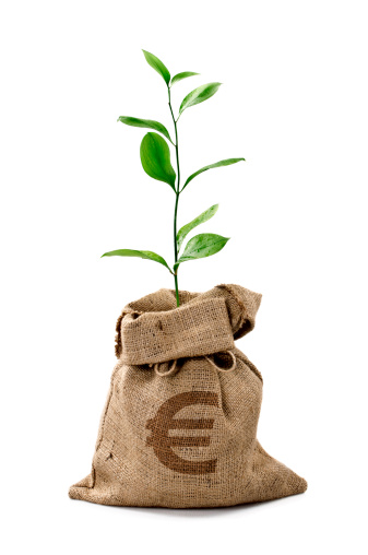 European Union Currency「Money Tree/Money Bag With Euro」:スマホ壁紙(13)