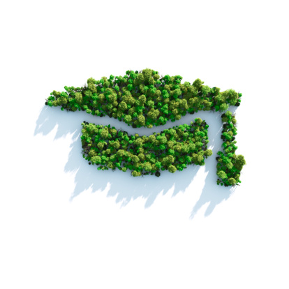 Graduation「Green Study」:スマホ壁紙(14)