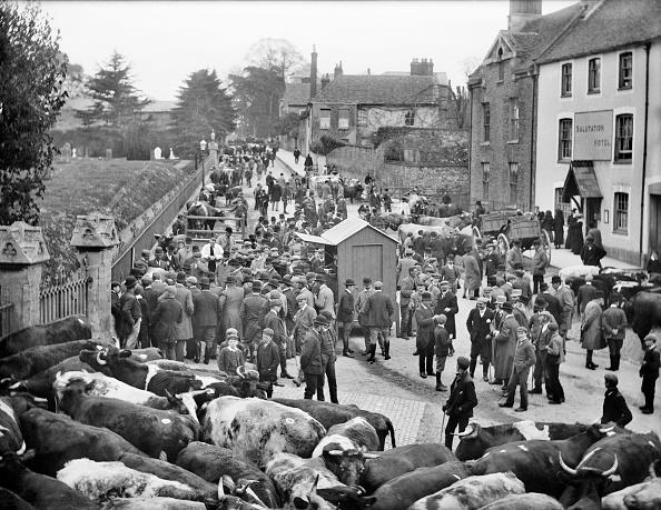 Edwardian Style「Cattle Market」:写真・画像(2)[壁紙.com]