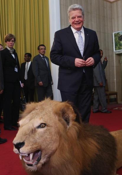 Stuffed「German President Gauck Visits Ethiopia」:写真・画像(13)[壁紙.com]