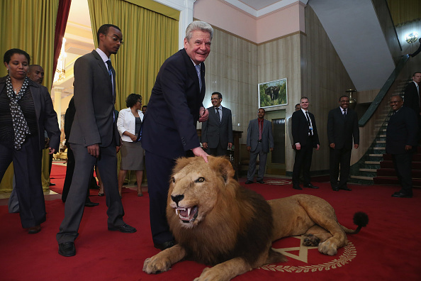 Stuffed「German President Gauck Visits Ethiopia」:写真・画像(14)[壁紙.com]