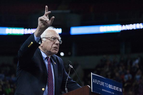 Matt Mills McKnight「Democratic Presidential Candidate Bernie Sanders Campaigns In Seattle, Washington」:写真・画像(15)[壁紙.com]