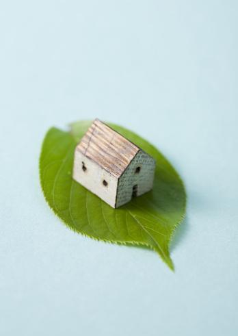 Japan「Leaf and miniature house」:スマホ壁紙(0)