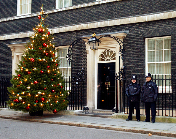 Christmas Tree「Christmas Displayed at 10 Downing Street」:写真・画像(19)[壁紙.com]