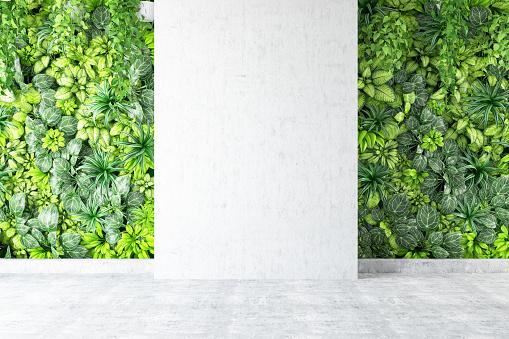 Outdoors「Vertical Garden with Empty Wall」:スマホ壁紙(5)