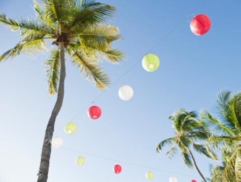 British Virgin Islands「Lanterns and palm trees」:スマホ壁紙(11)