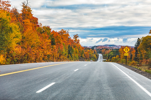 Autumn leaves「Canada, Ontario, main road through colorful trees in the Algonquin park area」:スマホ壁紙(11)