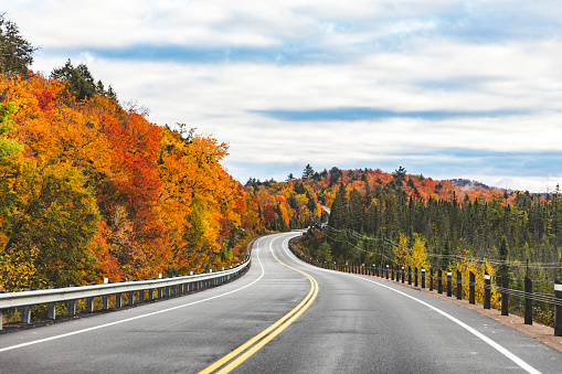 Autumn leaves「Canada, Ontario, main road through colorful trees in the Algonquin park area」:スマホ壁紙(6)