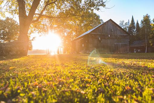 Sunbeam「Canada, Ontario, wooden barn inside Algonquin park at sunset」:スマホ壁紙(17)