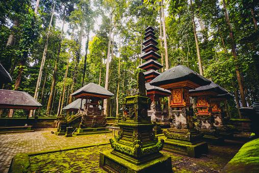 Praying「Sacred Monkey Forest Sanctuary in Ubud, Bali, Indonesia」:スマホ壁紙(7)