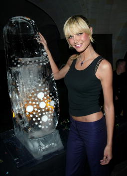 Ice Sculpture「Heidi Klum Launches Birkenstock Shoe Collection」:写真・画像(6)[壁紙.com]