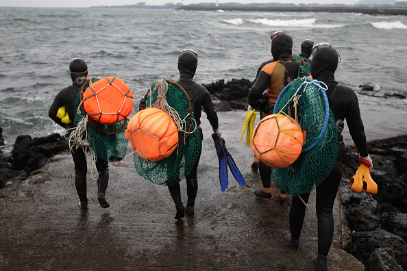 潜水「'Haenyeo' Sea Women In Jeju」:写真・画像(8)[壁紙.com]
