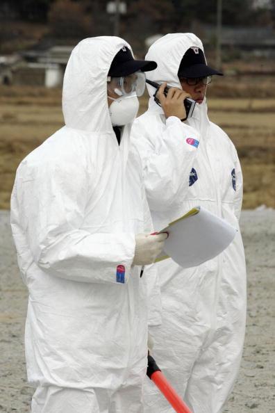 検疫「Avian Flu Found In South Korea」:写真・画像(6)[壁紙.com]