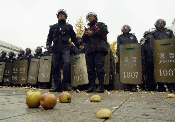 Side By Side「FTA Protests」:写真・画像(2)[壁紙.com]